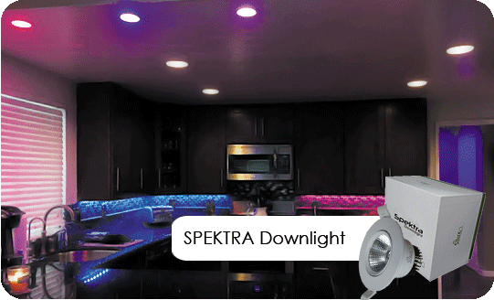 spektra downlight product ad